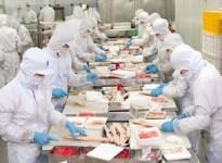 Ngành chế biến thực phẩm tăng trưởng nhanh của việt nam thu hút sự quan tâm của đầu tư nước ngoài
