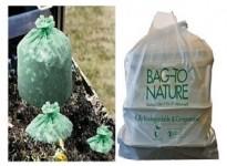 Phân biệt Compostable với Degradeble và Biodegradeble