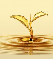 Chất phá bọt gốc dầu khoáng trong chế biến thực phẩm EMULTROL DFM OLV-55 FG