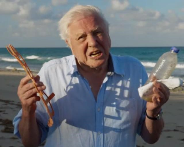 David Attenborough raised the issue of the impact plastic has on the sea